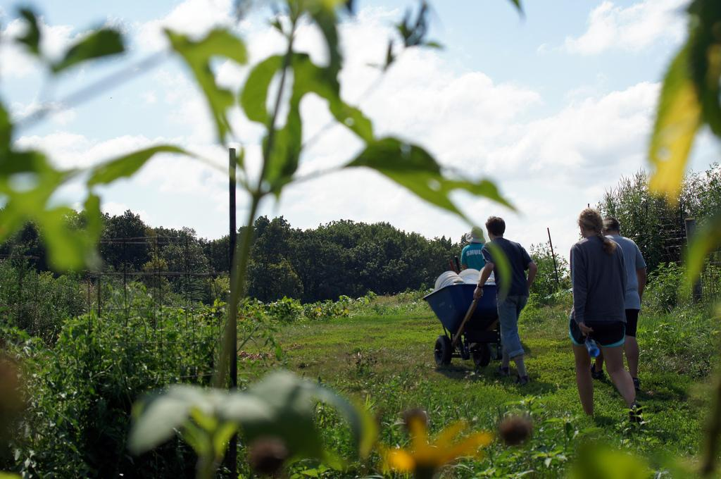 Iowa City Summer of Solutions members head out to the fields, volunteering on a farm in Solon. Photo by Eli Shepherd
